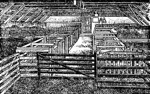 Рис. 18. Родильное отделение для овец