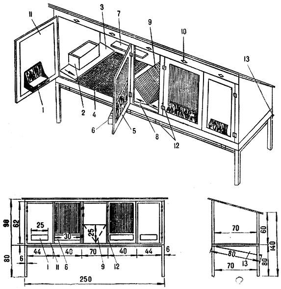Схема устройства клетки для