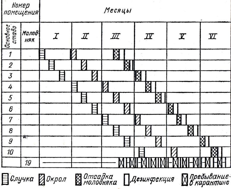 График уборки помещений образец - 577