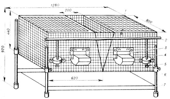 3 - бункерная кормушка;
