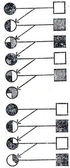 Схема сложного