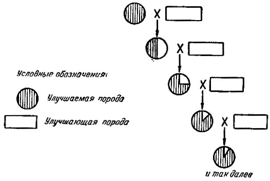 Схема поглотительного