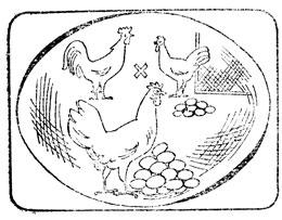 Использование гетерозиса при производстве яиц и мяса птицы